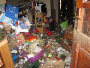 Verwahrloste Wohnung mit Katzenhaltung