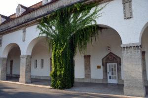 Gesamtkonzept: Dazu gehört auch der Umbau des Badehauses 2 zur Sauna. (Bild: Petra Ihm-Fahle)