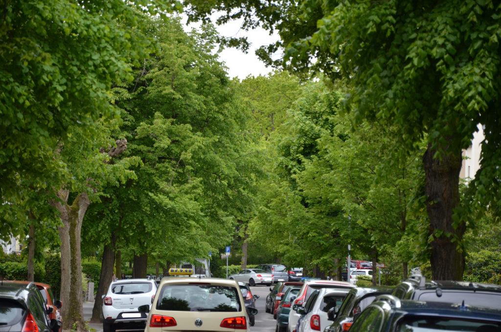 Der Verkehrsentwicklungsplan soll unter anderem das Anwohnerparken realisieren, beispielsweise in der Lindenstraße. (Bild: Petra Ihm-Fahle)