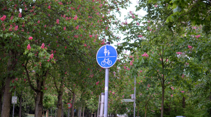 Verkehrsentwicklungsplan